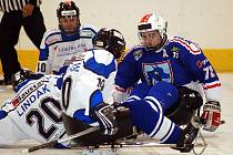 Ve druhém dvoukole sledgehokejové ligy nestačili karlovarští Sharks (v bílém) na Kolín (v modrém), kterému podlehli 3:4. Ve druhém duelu pak přejeli Budějovice v poměru 8:0.