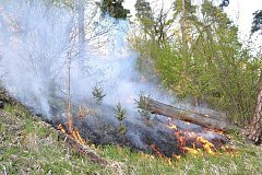 Požár trávy a lesa ve Vojkovicích
