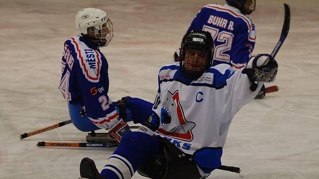 Jiří Berger, kapitán SKW Sharks Karlovy Vary.