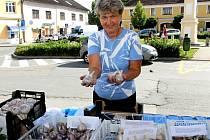 Farmářský trh v Neveklově.