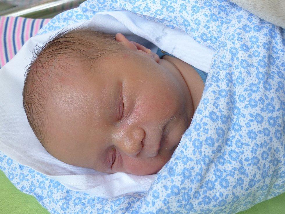 David Horák se narodil 26. března 2021 v kolínské porodnici, vážil 3370 g a měřil 50 cm. Ve Velkém Oseku se z něj těší maminka Hana.
