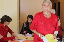 V Domě s pečovatelskou službou v Benešově voliči přistupovali k volbám se vším respektem.