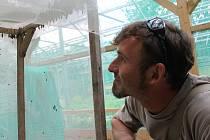 Pavel Křížek založil OF ČR v roce 1997 a v roce 2016 ve Voticích otevřel motýlárium.