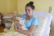 24. srpna v7.38 se šťastným manželům Andree a Martinovi Havelkovým z Benešova narodil synek Sebastian Havelka. Při narození malý Sebastian vážil 3050 gramů a měřil 49 centimetrů.