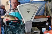 Veterinární kontrola prodeje ryb v Benešově.