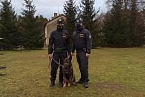 Policisté se služebním psem Haskem, který vystopoval lupiče od vlašimské benzinky.
