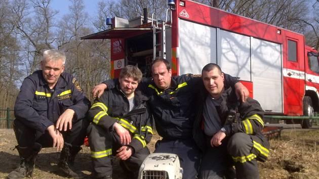 Záchrana káni z bahna vypuštěného Konopišťského rybníku.