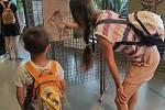 Odpoledne s vážkami ve Vodním domě Hulice.