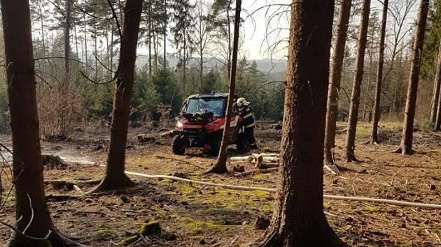 Hasiči vyjížděli k požáru hrabanky v lese.