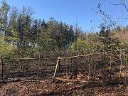 Požár lesa u Javorníka.