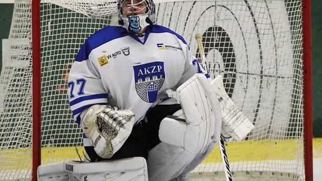 Brankář hokejistů HC Rytíři Vlašim Michal Holánek.