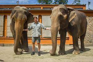 Samice slona indického Bala (vlevo) a Rání s ošetřovatelem Václavem Aschenbrennerem v Liberecké zoologické zahradě na snímku z 17. července.