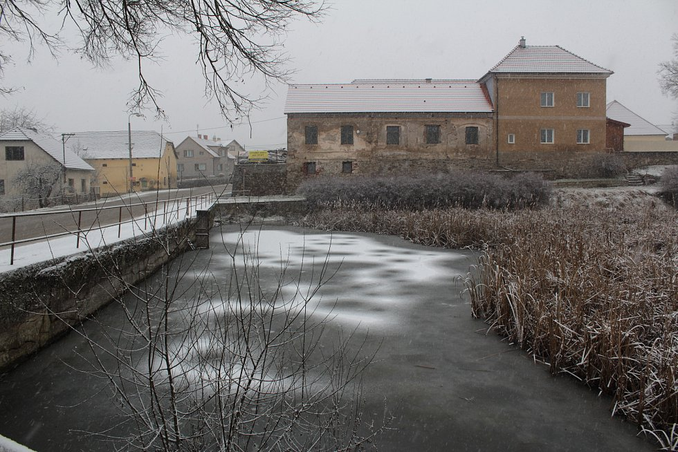 Pivovarský rybník v Louňovicích pod Blaníkem v lednu roku 2021.