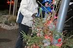 Rozsvěcení vánočního stromu v Týnci nad Sázavou.