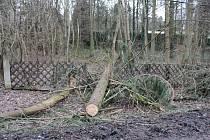 Vítr vyvrátil strom například i u motelu Konopiště.