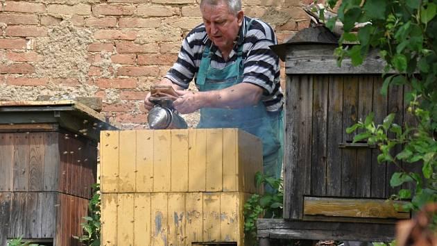 V Benešově se včelaři organizují už 110 let.
