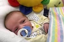 Které miminko vyhraje titul miminko měsíce a které titul miminko roku se dozvíme už za 19 dní.