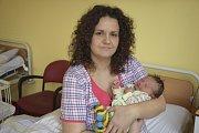 Rodiče Andrea a Petr Vršečtí mají radost ze svého prvního synka Petra, který se jim narodil ve středu 15. února ve 3.19. Vážil 3460 gramů a měřil 51 centimetrů. Rodiče se svým miminkem žijí v Kosově Hoře.