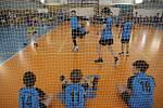 Z krajského kola turnaje žáků základních škol ve vybíjené v Benešově.