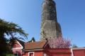 Zřícenina hradu Jenštejn.