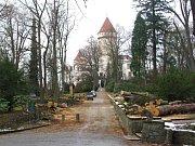 Alej u východního přístupu k zámku.