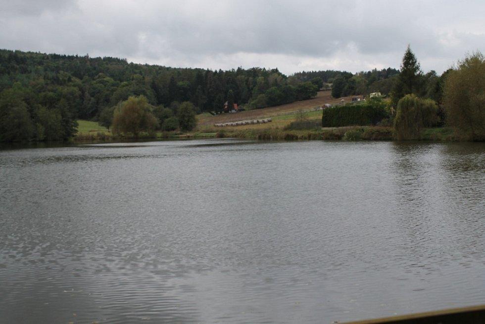 U Lešan má zmizet 20 hektarů lesa, místo něj tam má být 50 metrů hluboká těžní jáma kamenolomu.