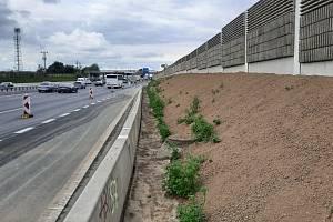 Protihluková stěna na dálnici D1 u Újezdu nedaleko Průhonic.