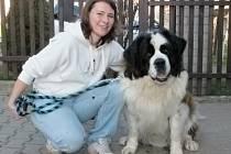 Psí miláček 2016: jedenapůlroční svatobernardský pes Baryk z Chocholu u Tichonic na Benešovsku se svou paničkou Veronikou Němcovou.