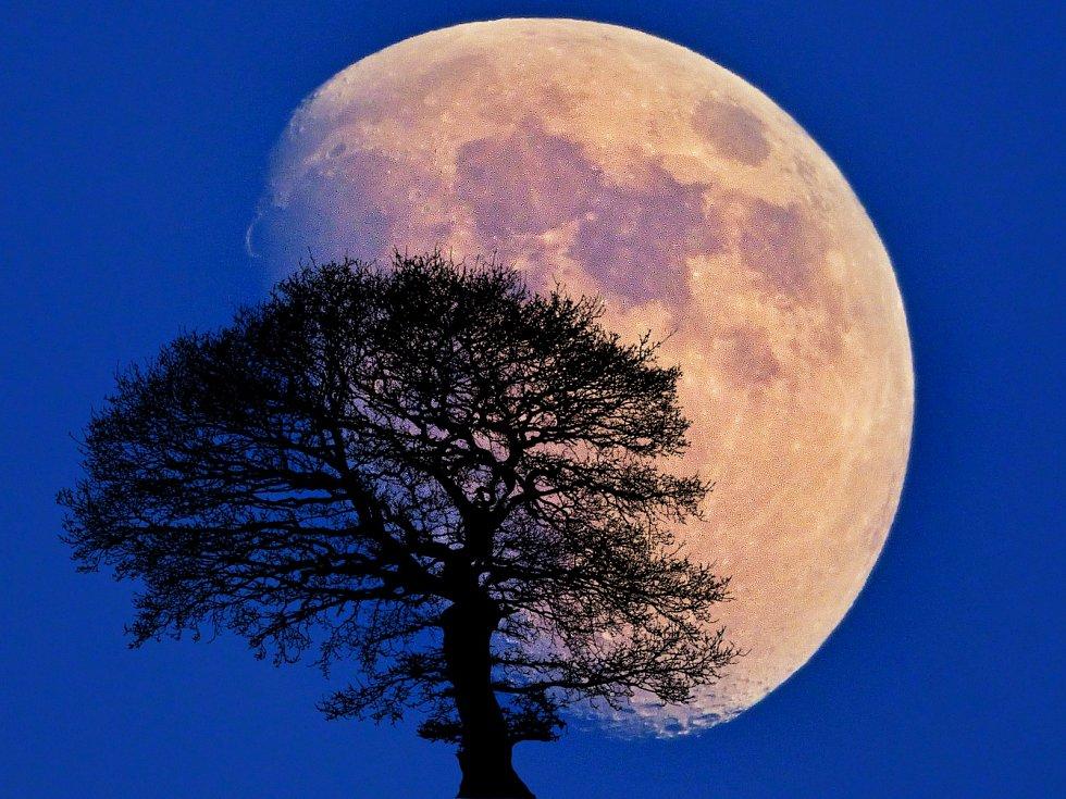 Měsíc v celé své kráse.