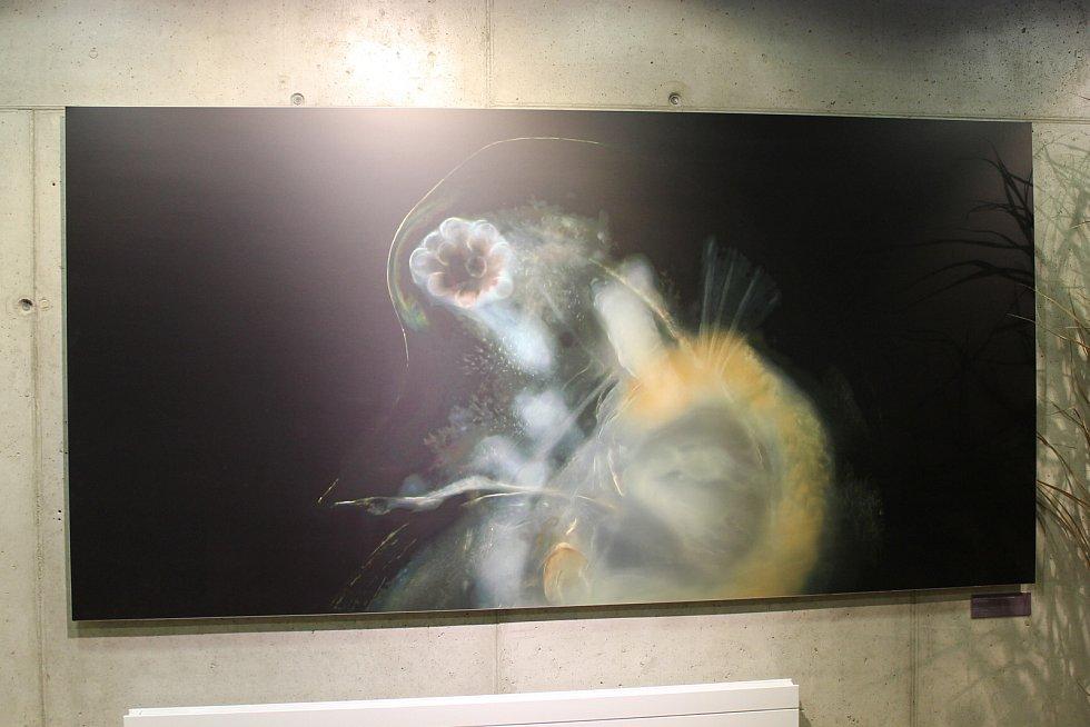 Expozici věnovanou vodě si mohou prohlédnout návštěvníci v Hulicích.