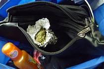 Služební pes celníků vyčmuchal ve vlaku marihuanu.