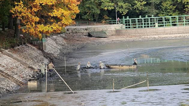 Vypouštění rybníka Papírna před výlovem.
