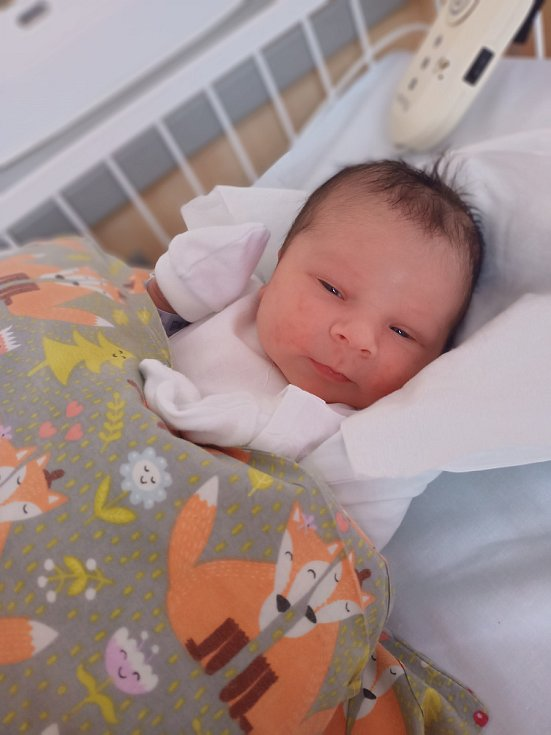 Bernard Urban se narodil dne 18. dubna v kladenské porodnici. Po porodu vážil 3,52kg a měřil 49 cm. S rodiči Ivetou a Václavem Urbanovými bude bydlet v Kladno-Švermov.