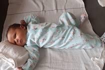 Lucie Čelleňuková se narodila 21.2.2021 v 0:35 hodin v boleslavské porodnici. Po porodu vážila 4010 g a měřila 53 cm. Narodila se mamince Elišce, doma ji čekal brácha Jaromírek a tatínek Miroslav.  foto: rodinný archiv