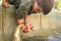 K úhynu ryb v Blanici přispěl i nízký průtok na konci léta