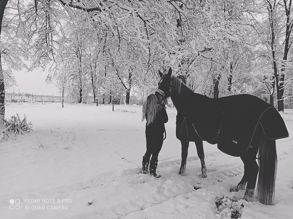 Zasněžená farma Loreta ve Vlašimi