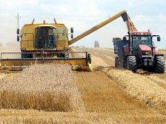 Ilustrační foto: Mladí zemědělci nemají k dotacím snadnou cestu