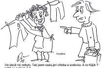 Kreslený humor Jiřího Cinkeise a Josefa Pšeničky na pokračování.