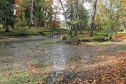 Výlov rybníka si užili zájemci v zámeckém areálu v Odlochovicích.