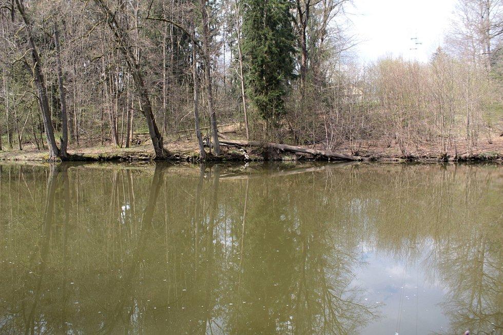 Rybaření u Konopišťského potoka nedaleko Benešova.