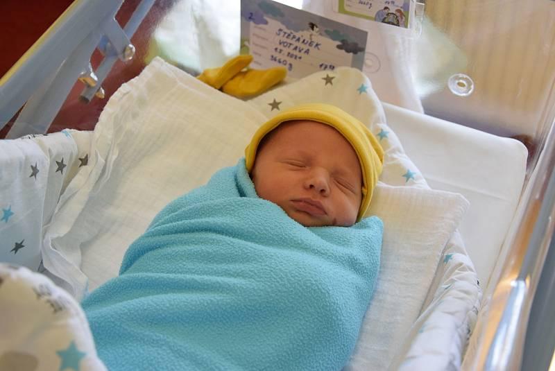 Štěpán Votava se partnerům Janě Havlíkové a Martinu Votavovi narodil v benešovské nemocnici 1. května 2021 v 17.10 hodin, vážil 3660 gramů, měřil 53 centimetrů. Bydlištěm rodiny je Benešov.