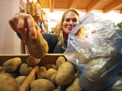 Ilustrační foto: Díky propagační akci má letos poptávka po bramborách vzrůst