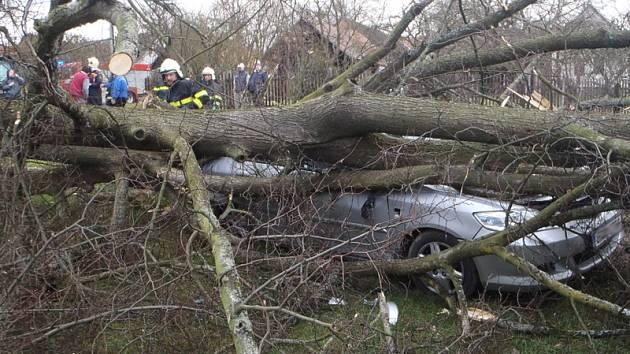Lípa v osadě Bořetice zavalila v sobotu před 14. hodinou osobní auto. Lidé stačili utéct.