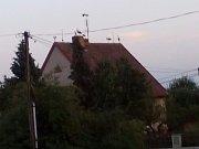 Hejno asi šedesáti čápů ještě v Trhovém Štěpánově neviděli. Ptáci sedali na domy, lampy i střechu kostela.