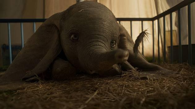 Dumbo, film