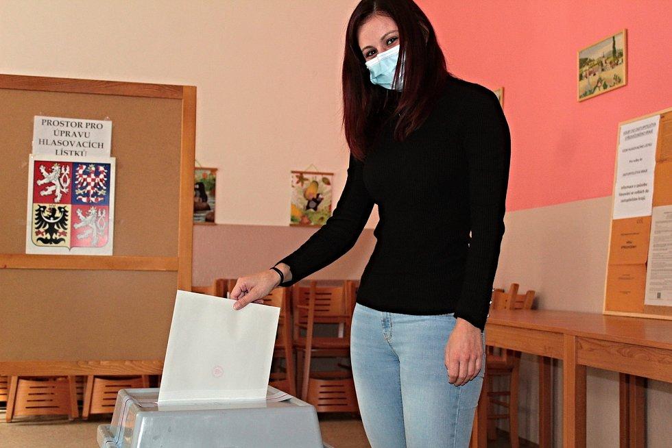 Volby do krajského zastupitelstva v Týnci nad Sázavou.