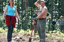 Bezmála osmnáct tisíc stromů vysadila v těchto dnech soukromá společnost v oblasti Poříčí nad Sázavou
