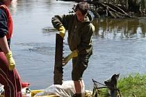 Dobrovolníci při úklidu řeky.