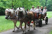 Klid ve Vlašimi budou mít i návštěvníci zámeckého parku, kteří se tam často projíždějí kočárem taženým koňmi.
