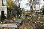 Polámané stromy na benešovském hřbitově a v ulici U Vodárny.